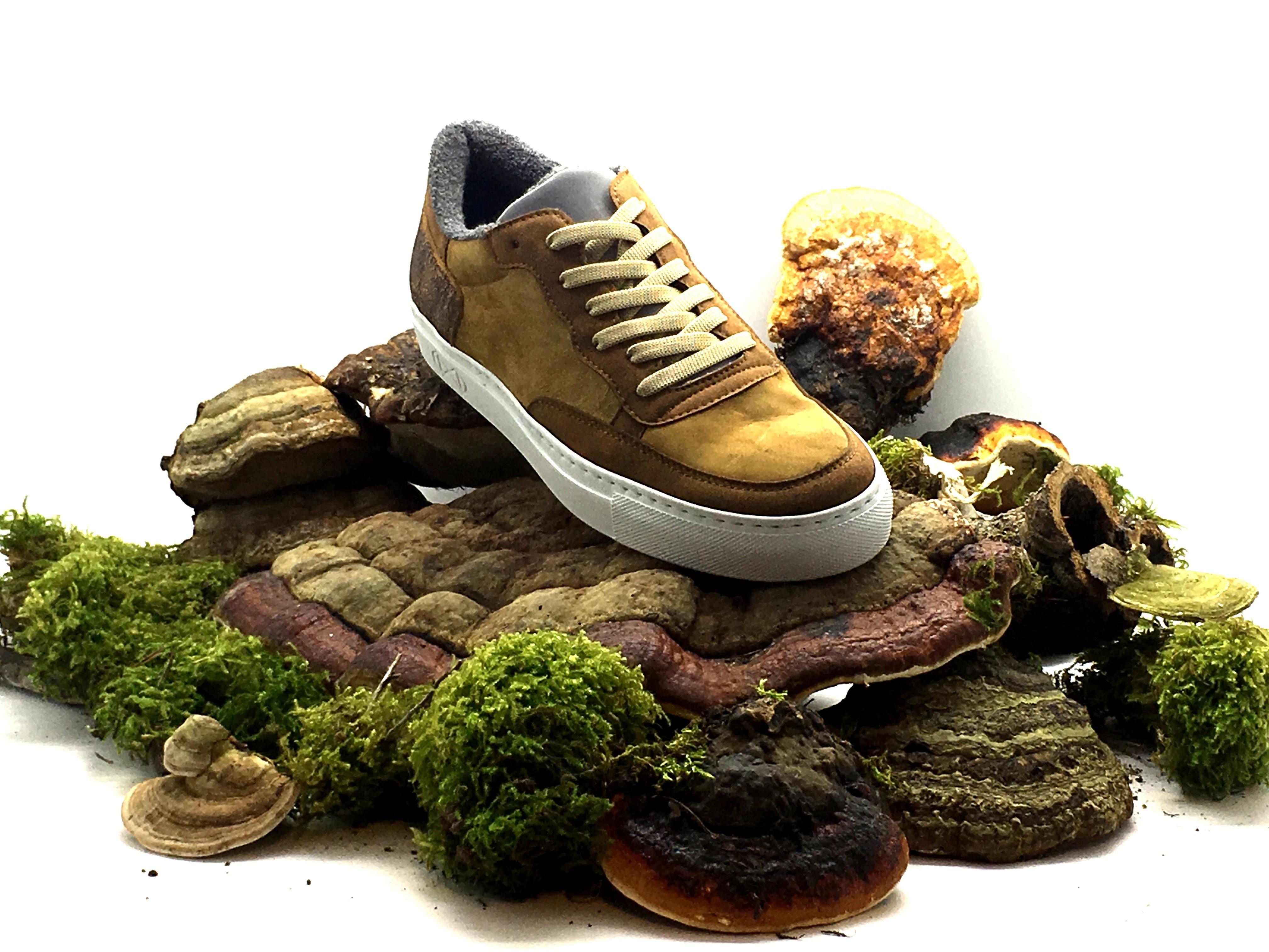 Perspektiven: Schuh und Lederindustrie